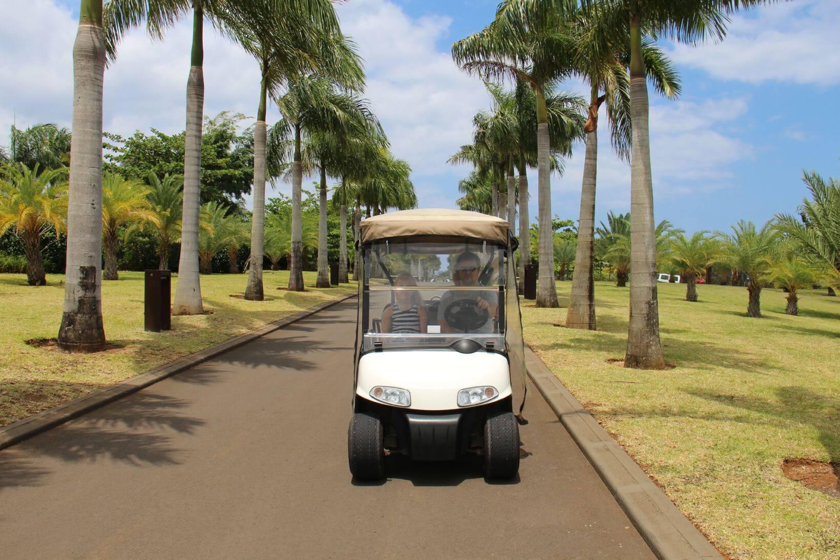 The Heritage Villa - Mauritius - Golf vogn