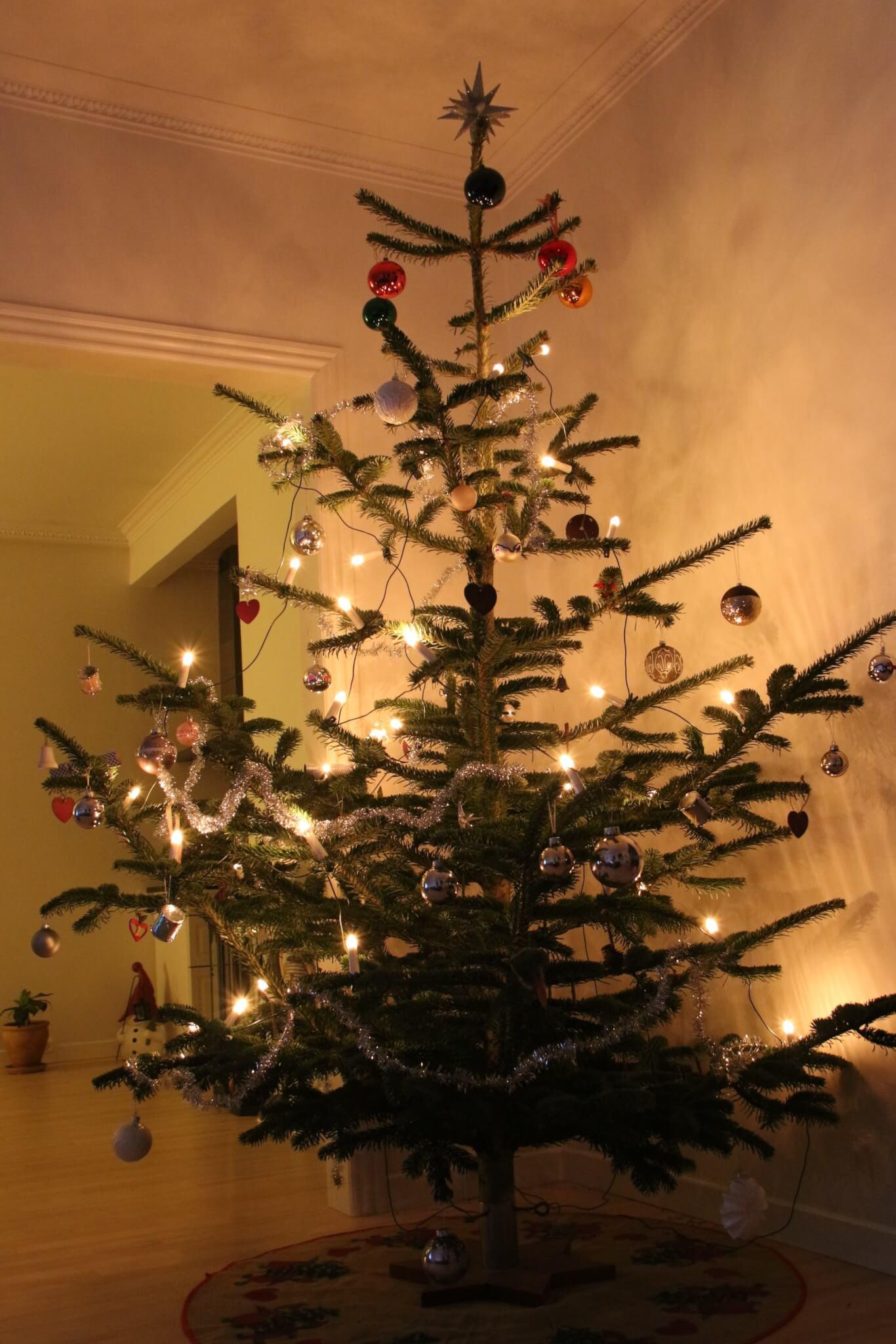 vores... knap så diskrete juletræ