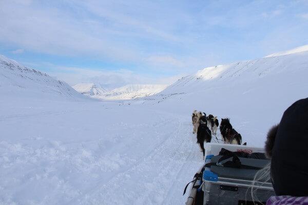 Oplev Svalbard fra hundeslæde  / Billedet er taget af @ByAnnette.dk