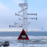 Svalbard, Dag 1 ~ Hundehvalpe, tissetræ og drivis!