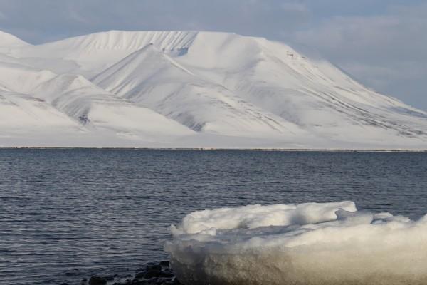 Drivis ved indsejlingen af svalbard havn // Billedet er taget af @byAnnette.dk